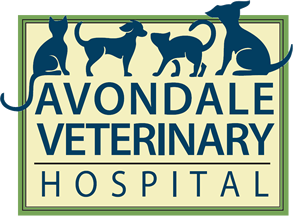 Avondale Veterinary Hospital